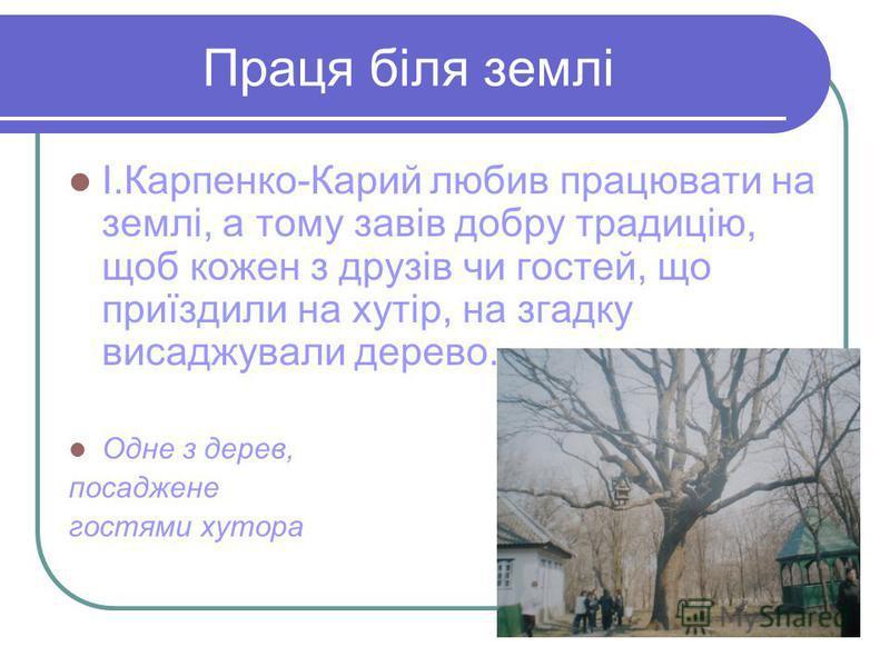Праця біля землі І.Карпенко-Карий любив працювати на землі, а тому завів добру традицію, щоб кожен з друзів чи гостей, що приїздили на хутір, на згадку висаджували дерево. Одне з дерев, посаджене гостями хутора