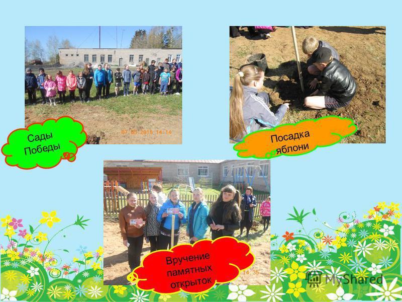 Сады Победы Посадка яблони Вручение памятных открыток
