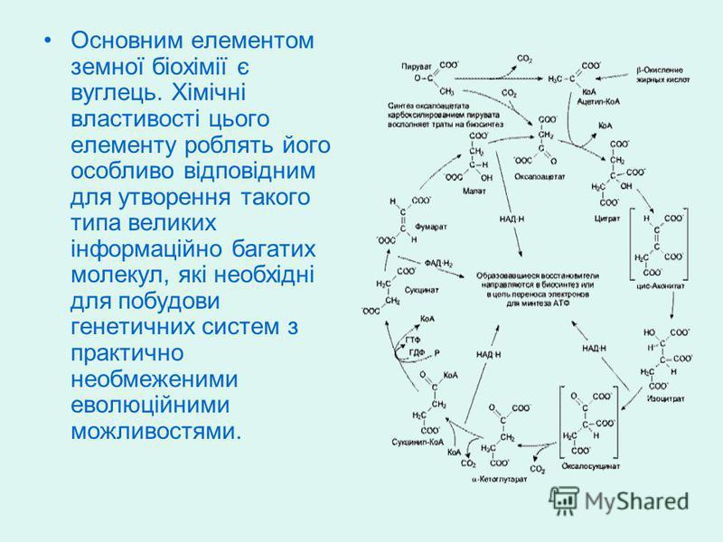 Основним елементом земної біохімії є вуглець. Хімічні властивості цього елементу роблять його особливо відповідним для утворення такого типа великих інформаційно багатих молекул, які необхідні для побудови генетичних систем з практично необмеженими е