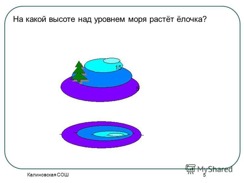 Калиновская СОШ 5 На какой высоте над уровнем моря растёт ёлочка? 5 15
