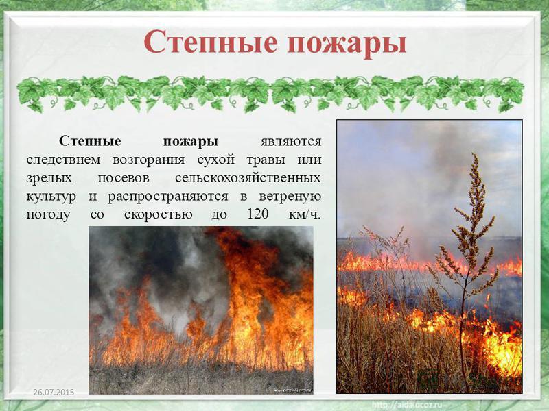 Степные пожары являются следствием возгорания сухой травы или зрелых посевов сельскохозяйственных культур и распространяются в ветреную погоду со скоростью до 120 км/ч. 26.07.20152