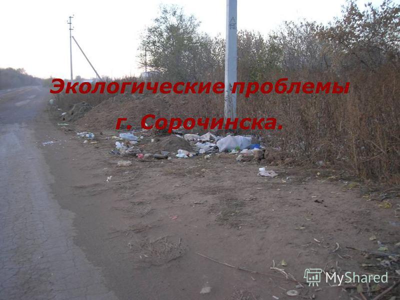 Экологические проблемы г. Сорочинска.