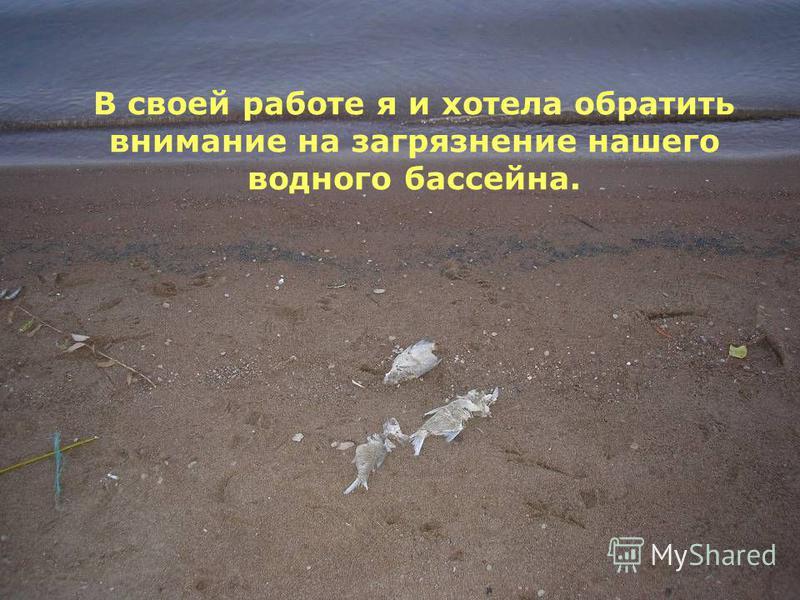 В своей работе я и хотела обратить внимание на загрязнение нашего водного бассейна.