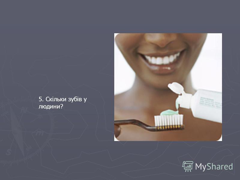 5. Скільки зубів у людини?