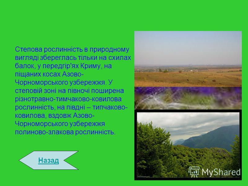 Степова рослинність в природному вигляді збереглась тільки на схилах балок, у передгір'ях Криму, на піщаних косах Азово- Чорноморського узбережжя. У степовій зоні на півночі поширена різнотравно-тимчаково-ковилова рослинність, на півдні – типчаково-