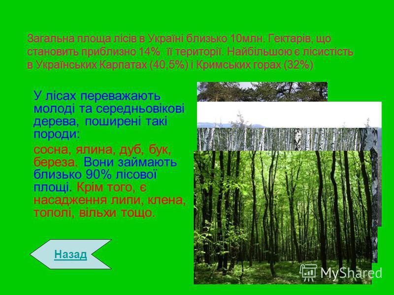 Загальна площа лісів в Україні близько 10млн. Гектарів, що становить приблизно 14% її території. Найбільшою є лісистість в Українських Карпатах (40,5%) і Кримських горах (32%) У лісах переважають молоді та середньовікові дерева, поширені такі породи: