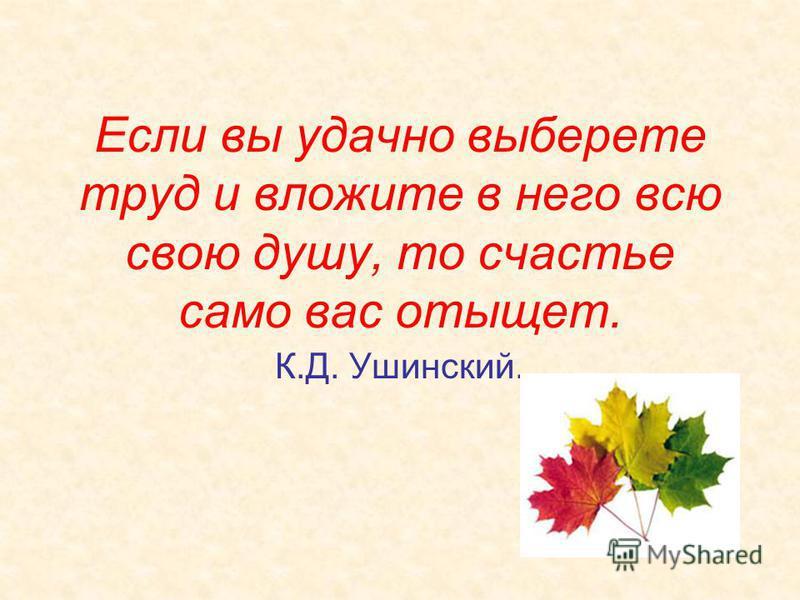 Если вы удачно выберете труд и вложите в него всю свою душу, то счастье само вас отыщет. К.Д. Ушинский.
