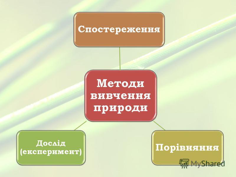 Методи вивчення природи Спостереження Порівняння Дослід (експеримент)