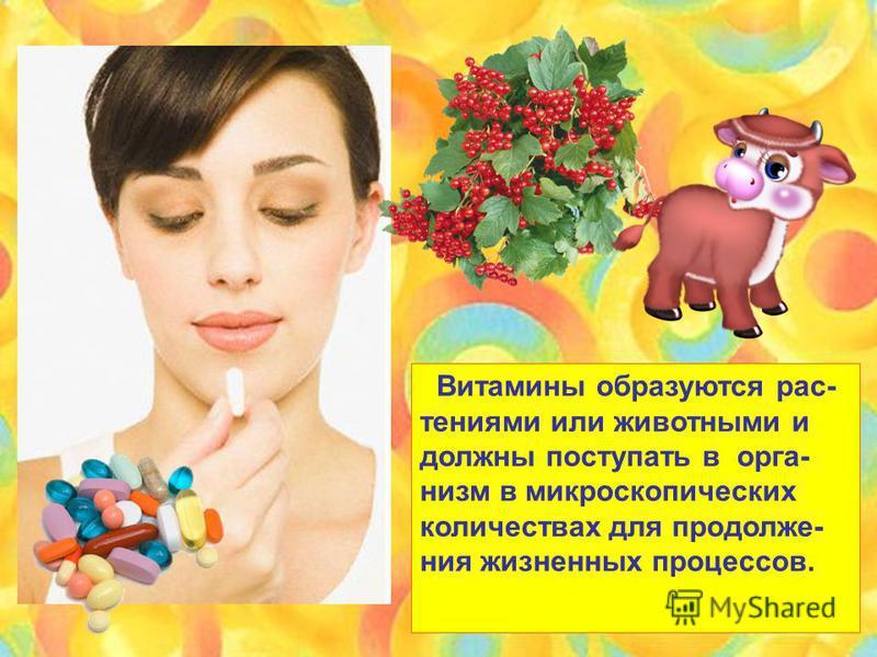 Витамины образуются растениями или животными и должны поступать в организм в микроскопических количествах для продолжения жизненных процессов.