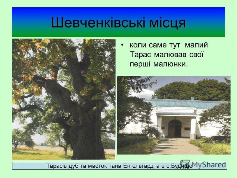 Шевченківські місця коли саме тут малий Тарас малював свої перші малюнки. Тарасів дуб та маєток пана Енгельгардта в с.Будище