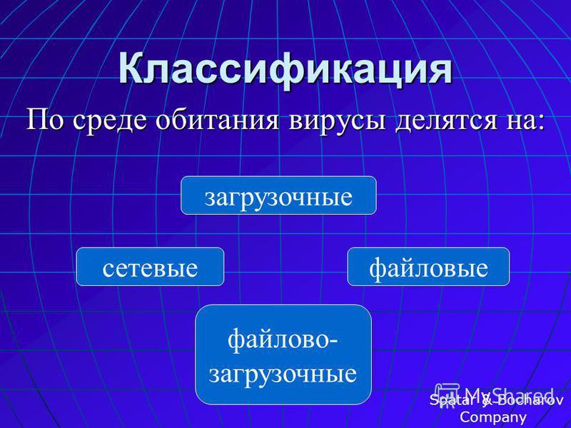 Свойства Вирус– это программа, обладающая способностью к самовоспроизведению. Spatar & Bocharov Company