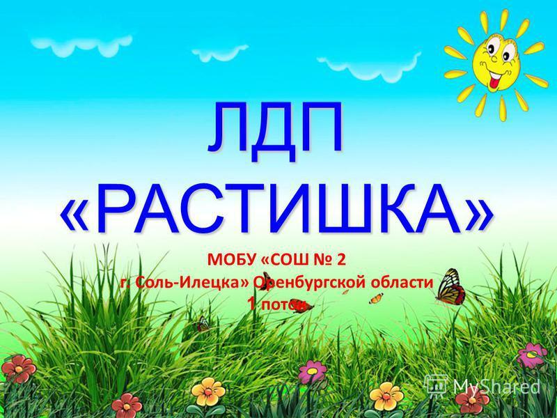 ЛДП «РАСТИШКА» ЛДП «РАСТИШКА» МОБУ «СОШ 2 г. Соль-Илецка» Оренбургской области 1 поток