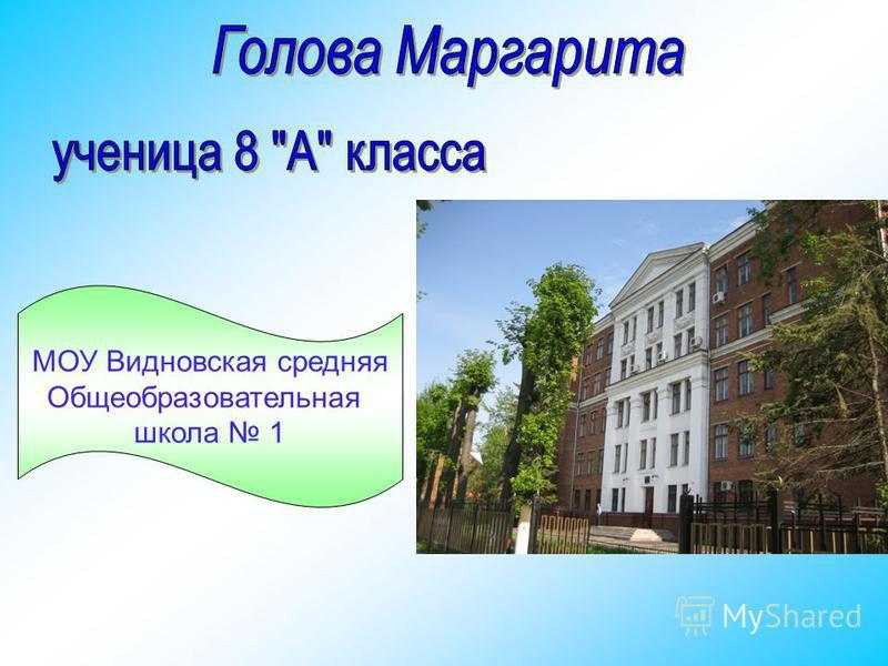 МОУ Видновская средняя Общеобразовательная школа 1
