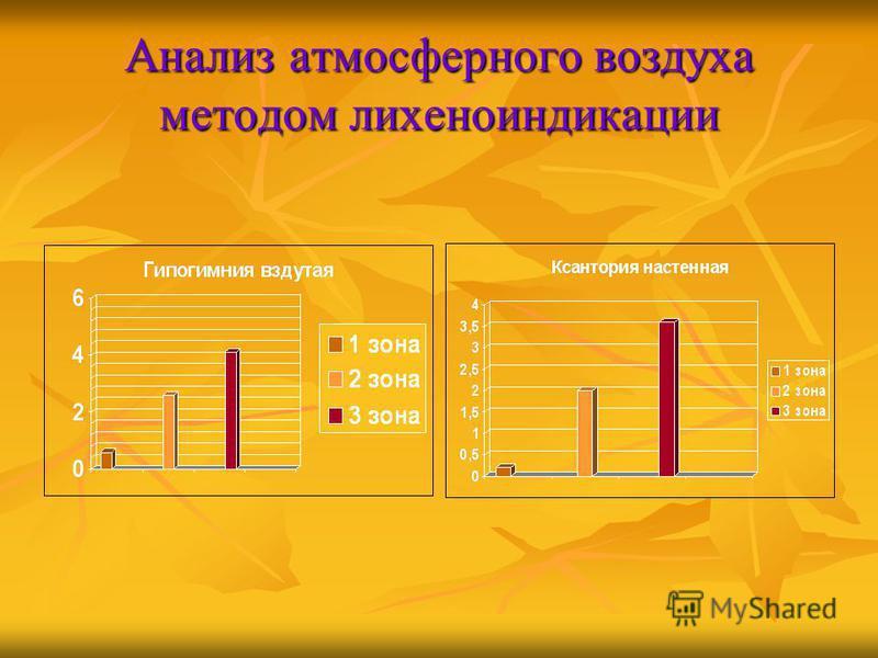 Анализ атмосферного воздуха методом лихеноиндикации