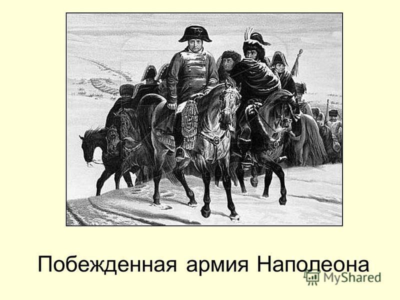 Побежденная армия Наполеона
