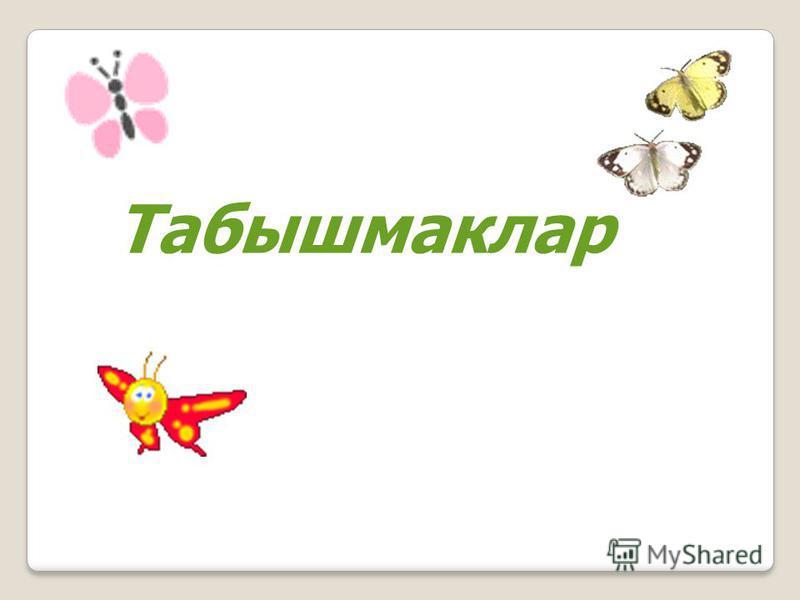 Табышмаклар