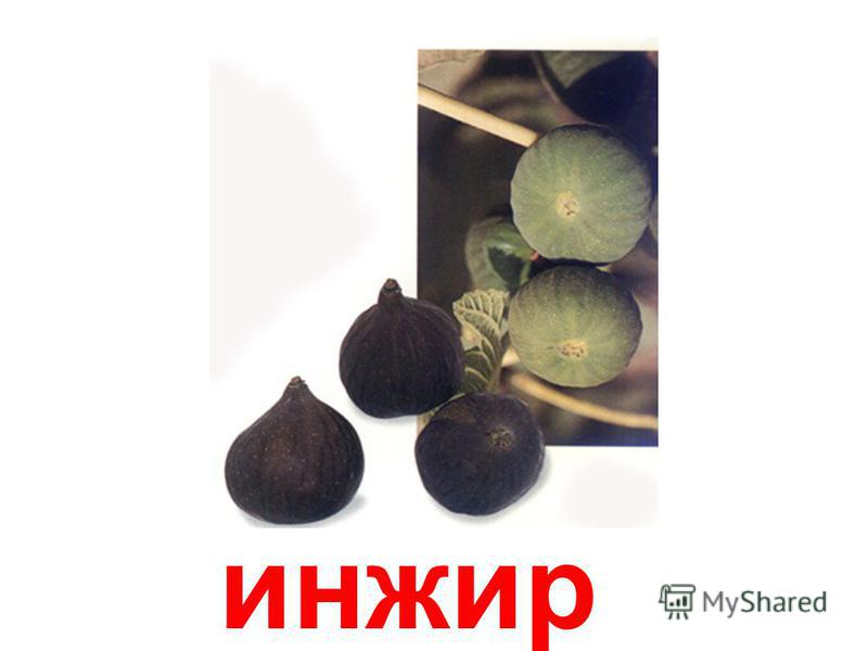 пешн- фрукт