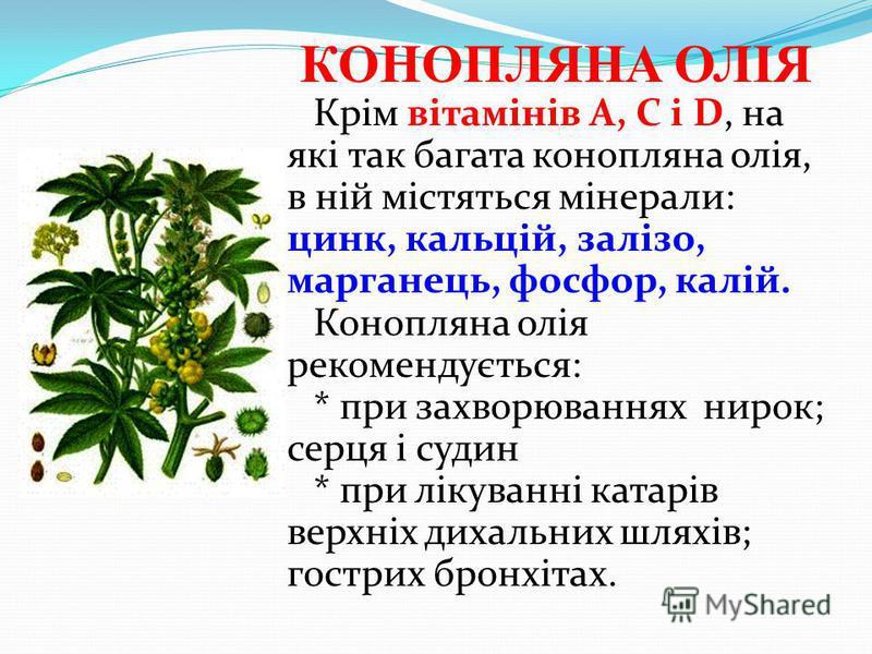 КОНОПЛЯНА ОЛІЯ Крім вітамінів А, С і D, на які так багата конопляна олія, в ній містяться мінерали: цинк, кальцій, залізо, марганець, фосфор, калій. Конопляна олія рекомендується: * при захворюваннях нирок; серця і судин * при лікуванні катарів верхн