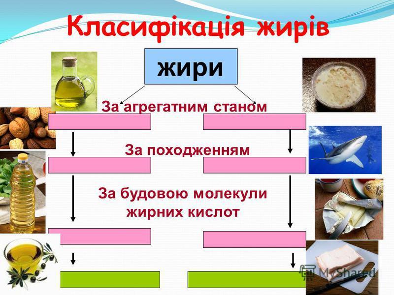 Класифікація жирів жири За агрегатним станом За походженням За будовою молекули жирних кислот