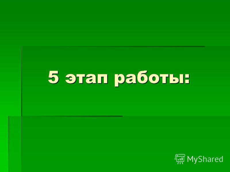5 этап работы:
