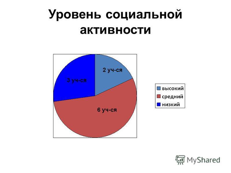 Уровень социальной активности 3 уч-ся 2 уч-ся 6 уч-ся