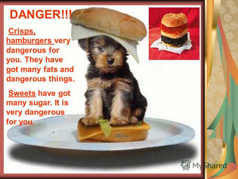 DANGER!!! Crisps, hamburgers very dangerous for you. They have got many fats and dangerous things. Sweets have got many sugar. It is very dangerous for you.