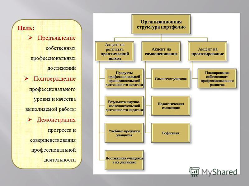 Цель: Предъявление собственных профессиональных достижений Подтверждение профессионального уровня и качества выполняемой работы Демонстрация прогресса и совершенствования профессиональной деятельности