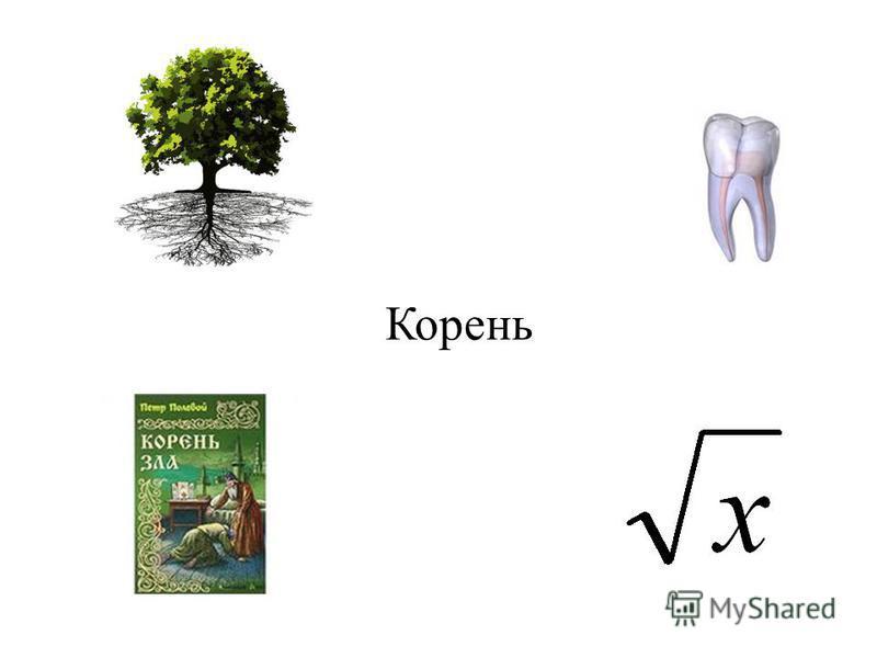 арифметический корень подкоренное выражение рациональное и иррациональное числа извлечение корня радикал