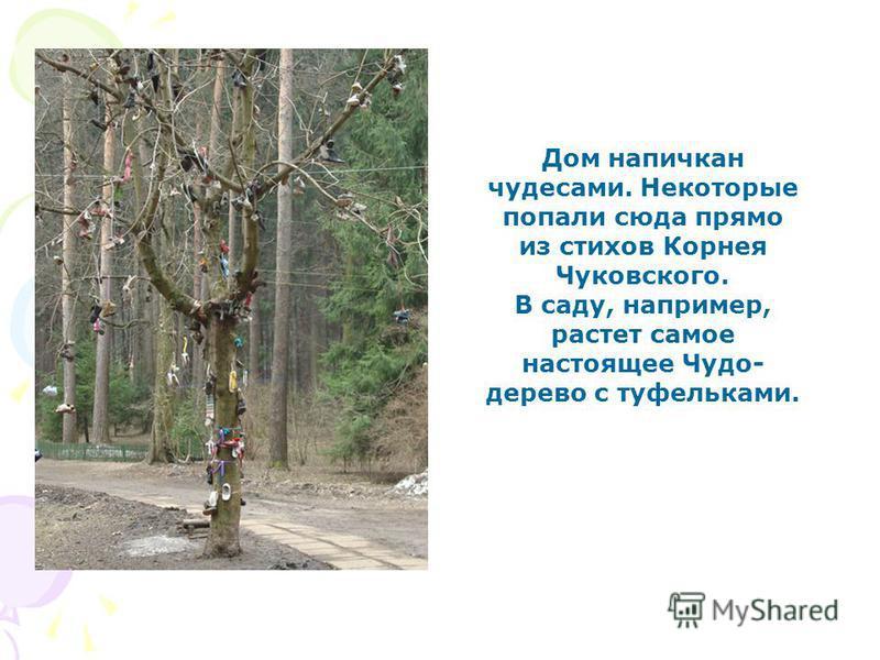 Дом напичкан чудесами. Некоторые попали сюда прямо из стихов Корнея Чуковского. В саду, например, растет самое настоящее Чудо- дерево с туфельками.