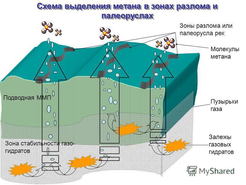 Схема выделения метана в зонах разлома и палеоруслах Зоны разлома или палеорусла рек Залежы газовых гидратов Пузырьки газа Молекулы метана Приходящее излучение, Q Осадки, R Облачность, n Влажность воздуха, q Температура, T Подводная ММП Зона стабильн