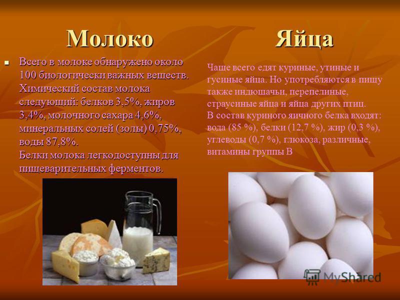 Молоко Яйца Всего в молоке обнаружено около 100 биологически важных веществ. Химический состав молока следующий: белков 3,5%, жиров 3,4%, молочного сахара 4,6%, минеральных солей (золы) 0,75%, воды 87,8%. Белки молока легкодоступны для пищеварительны