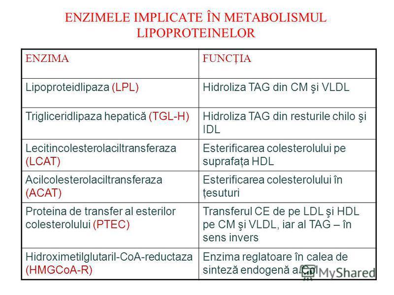 ENZIMELE IMPLICATE ÎN METABOLISMUL LIPOPROTEINELOR ENZIMAFUNCŢIA Lipoproteidlipaza (LPL)Hidroliza TAG din CM şi VLDL Trigliceridlipaza hepatică (TGL-H)Hidroliza TAG din resturile chilo şi IDL Lecitincolesterolaciltransferaza (LCAT) Esterificarea cole