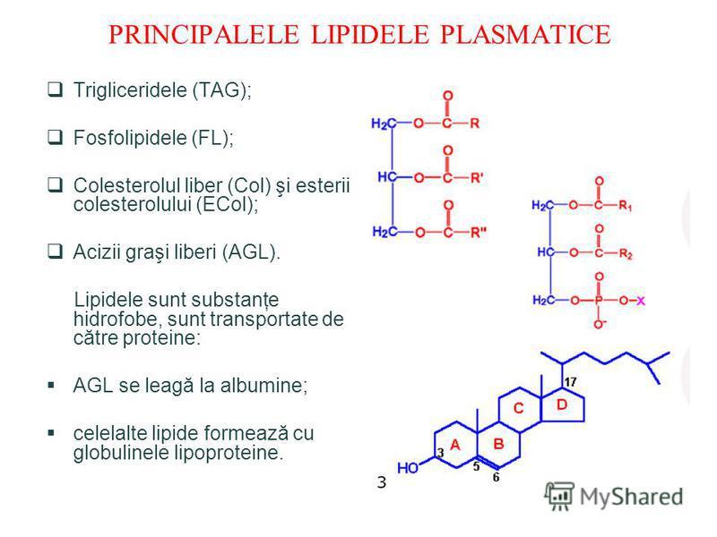 PRINCIPALELE LIPIDELE PLASMATICE Trigliceridele (TAG); Fosfolipidele (FL); Colesterolul liber (Col) şi esterii colesterolului (ECol); Acizii graşi liberi (AGL). Lipidele sunt substanţe hidrofobe, sunt transportate de către proteine: AGL se leagă la a