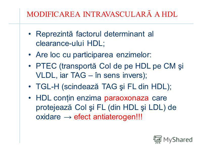MODIFICAREA INTRAVASCULARĂ A HDL Reprezintă factorul determinant al clearance-ului HDL; Are loc cu participarea enzimelor: PTEC (transportă Col de pe HDL pe CM şi VLDL, iar TAG – în sens invers); TGL-H (scindează TAG şi FL din HDL); HDL conţin enzima