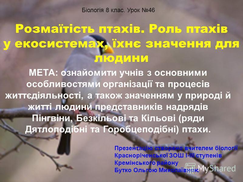 Розмаїтість птахів. Роль птахів у екосистемах, їхнє значення для людини МЕТА: ознайомити учнів з основними особливостями організації та процесів життєдіяльності, а також значенням у природі й житті людини представників надрядів Пінгвіни, Безкільові т