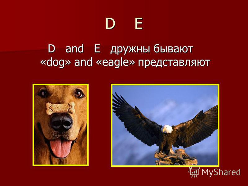 D and E дружны бывают «dog» and «eagle» представляют D E
