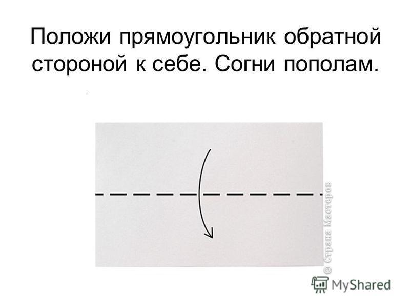 Положи прямоугольник обратной стороной к себе. Согни пополам..