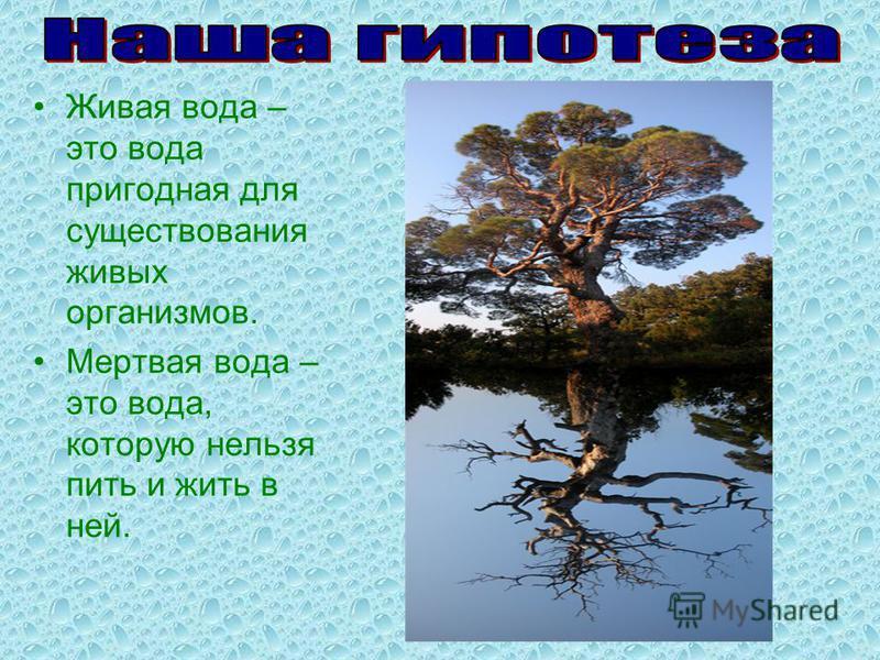 Живая вода – это вода пригодная для существования живых организмов. Мертвая вода – это вода, которую нельзя пить и жить в ней.