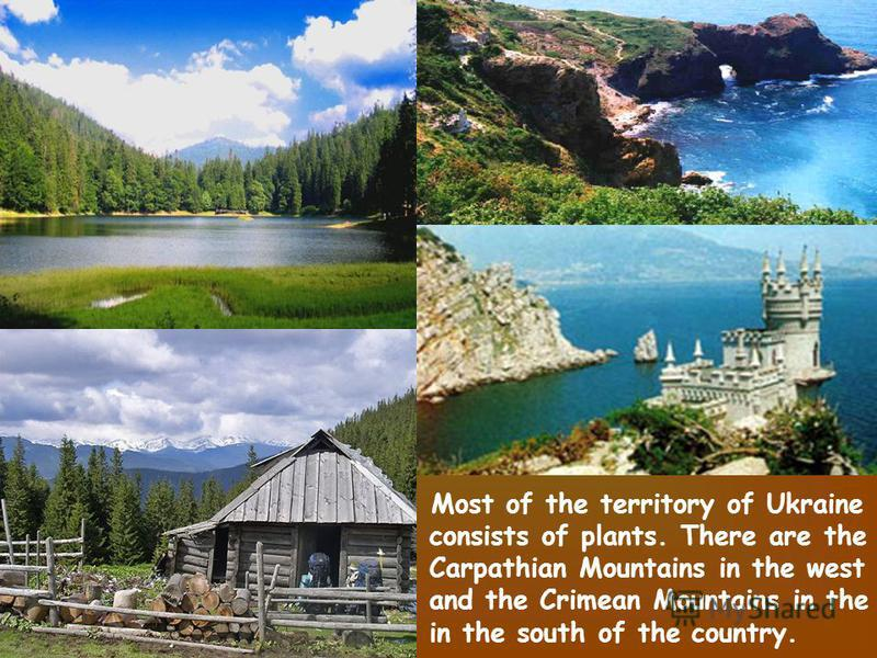 Most of the territory of Ukraine consists of plants. There are the Carpathian Mountains in the west and the Crimean Mountains in the in the south of the country.