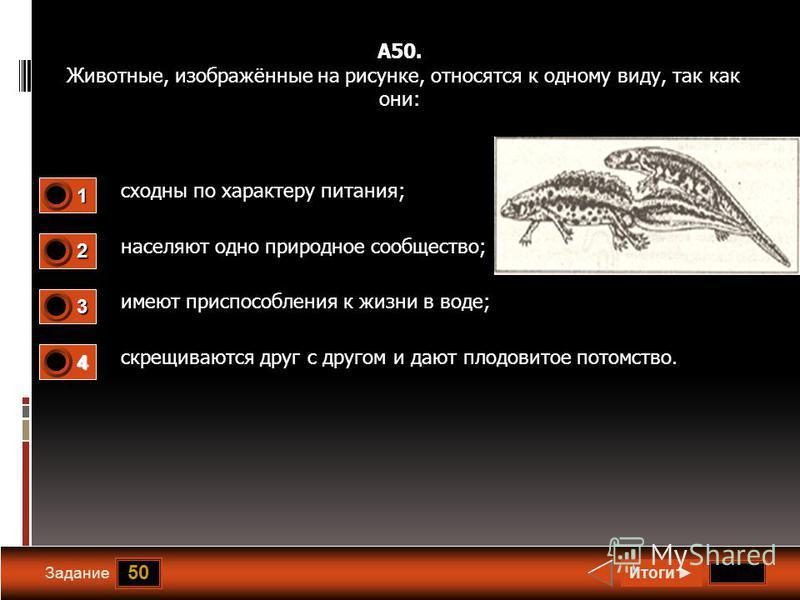 50 Задание А50. Животные, изображённые на рисунке, относятся к одному виду, так как они: сходны по характеру питания; населяют одно природное сообщество; имеют приспособления к жизни в воде; скрещиваются друг с другом и дают плодовитое потомство. Ито