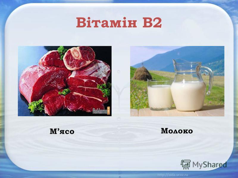 Вітамін В2 Мясо Молоко