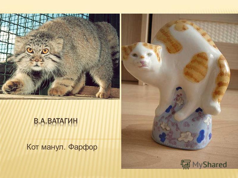 Кот манул. Фарфор