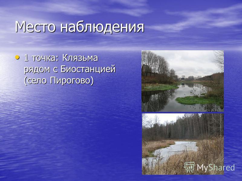 Место наблюдения 1 точка: Клязьма рядом с Биостанцией (село Пирогово) 1 точка: Клязьма рядом с Биостанцией (село Пирогово)