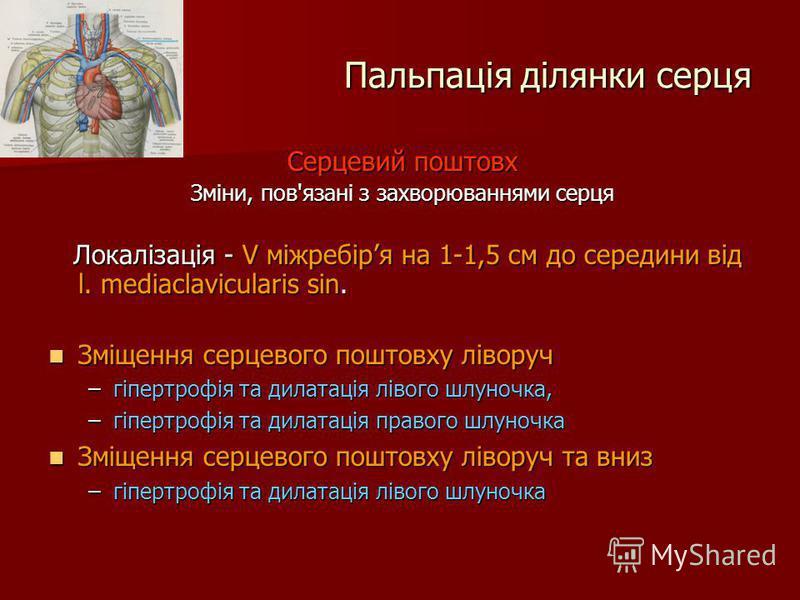 Пальпація ділянки серця Серцевий поштовх Зміни, пов'язані з захворюваннями серця Локалізація - V міжребіря на 1-1,5 см до середини від l. mediaclavicularis sin. Локалізація - V міжребіря на 1-1,5 см до середини від l. mediaclavicularis sin. Зміщення