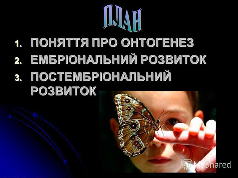 РОГАТИНСЬКИЙ ДЕРЖАВНИЙ АГРАРНИЙ КОЛЕДЖ © 2012
