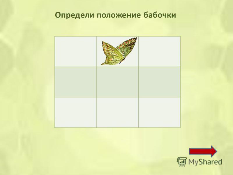 Задание 2 Пропусти две строки и посади бабочку в третью клетку.