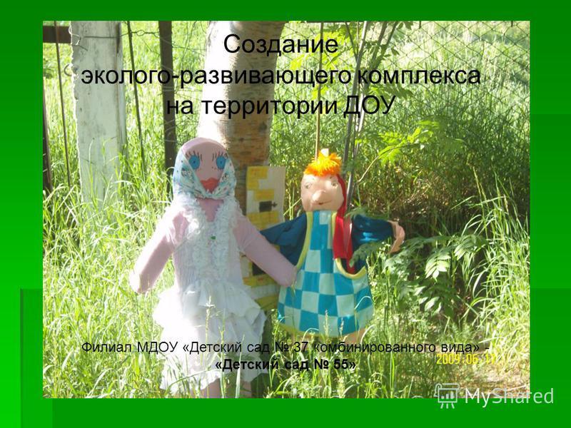 Создание эколого-развивающего комплекса на территории ДОУ Филиал МДОУ «Детский сад 37 комбинированного вида» - «Детский сад 55»