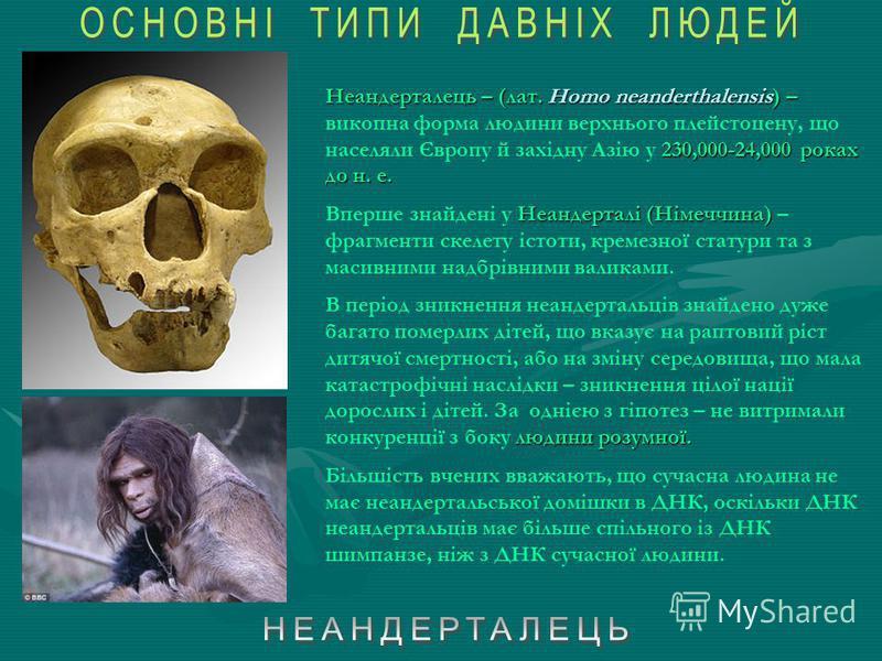 Атлантроп (Homo erectus mauritanicus) Хоббіт (Homo floresiensis) (череп і реконструкція) Homo heidelbergensis Синантроп (Homo erectus pekinensis )