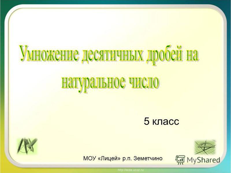 5 класс МОУ «Лицей» р.п. Земетчино