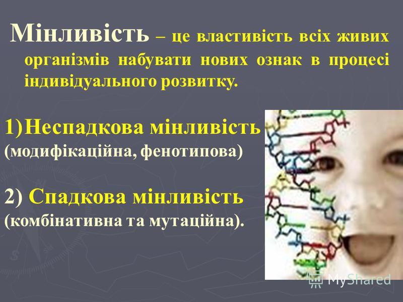 Основні питання лекції: 1. Мінливість та її форми: - модифікаційна мінливість - комбінативна мінливість - мутаційна мінливість 2. Мутагенні та тератогенні фактори. 1. Мінливість та її форми: - модифікаційна мінливість - комбінативна мінливість - мута